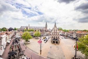 Tulip Tours Holland: Amsterdam Rotterdam Lisse Gouda Uithoorn Den Haag Leiden Zaandam and Haarlem